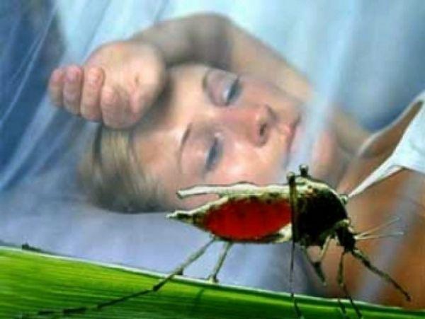 100%-ной защиты от малярии не существует