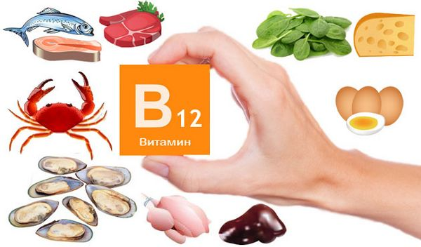 Так необходимый витамин В12
