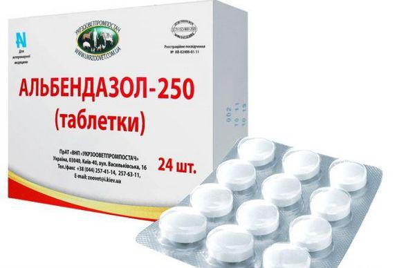 Альбендазол входит в состав вормила и выпускается самостоятельно