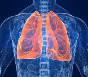 Симптомы паразитов в легких человека и их лечение. Паразиты живущие в легких человека